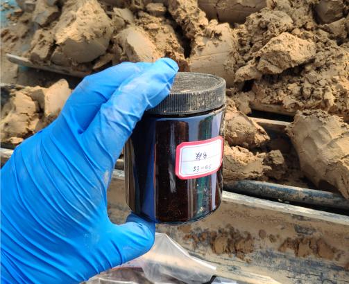 鄭華速凍食品廠土壤污染調查